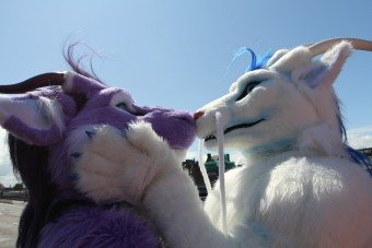ScotiaCon 2011